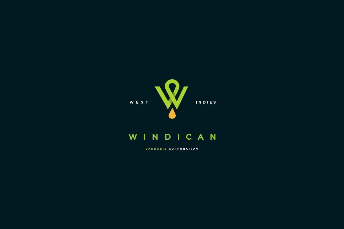 Diseño-Tráfico-Caribe-Estudio-Playa-del-Carmen-diseño-logo-windican
